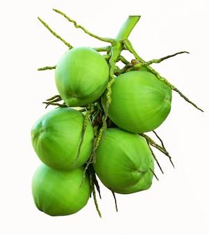 Bouquet de groupe de noix de coco vert isolé blanc