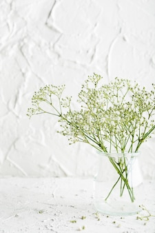 Bouquet de gypsophile