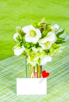 Bouquet d'hellébore sur table verte