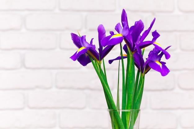 Bouquet d'iris contre le mur de briques blanches