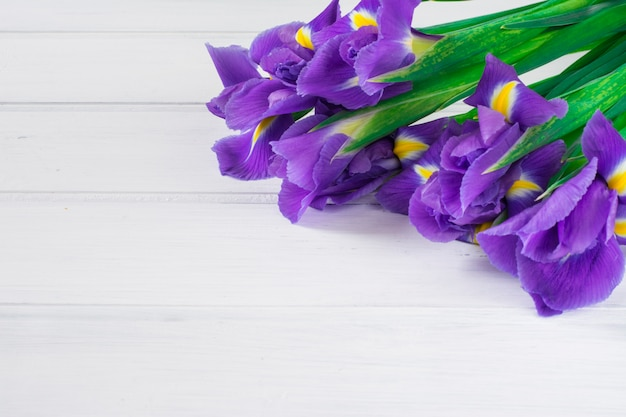 Bouquet d'iris violet sur fond blanc en bois