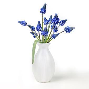 Bouquet de jacinthes dans un vase blanc