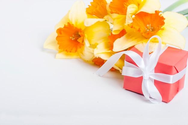 Bouquet de jonquilles et cadeau sur fond blanc