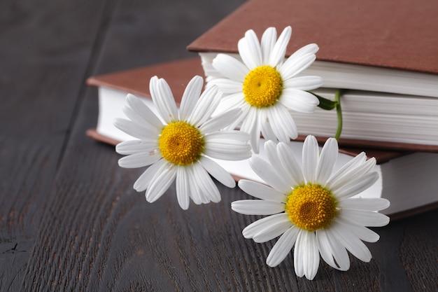 Bouquet de marguerites blanches sur vieux livre