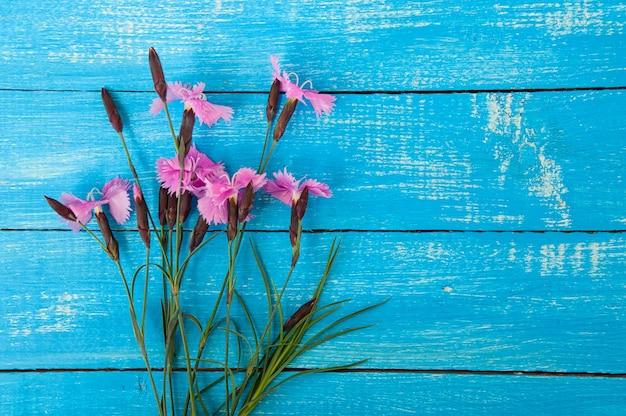 Bouquet d'oeillet de fleurs sauvages sur la surface en bois bleue