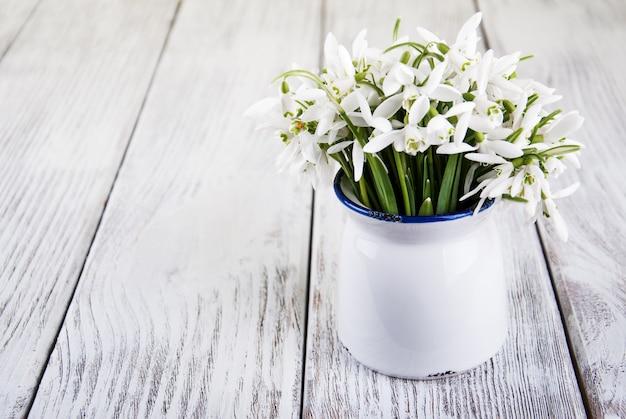 Bouquet de perce-neige