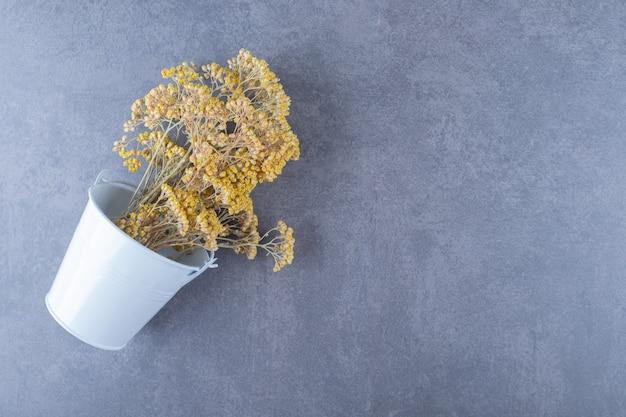 Bouquet de persil sec sur gris.