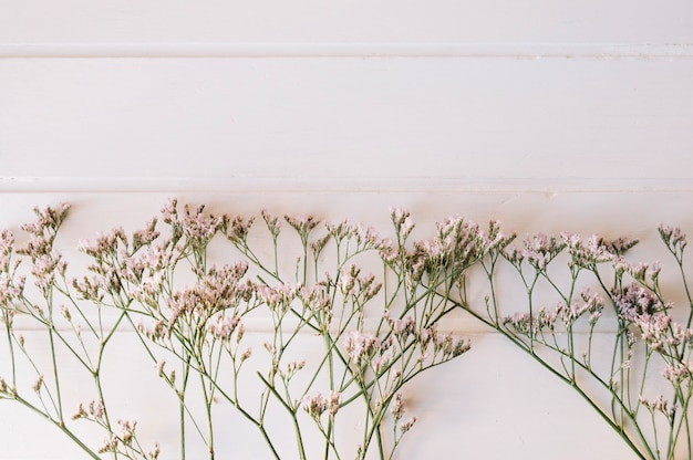 Bouquet de petites fleurs sur une rangée avec un espace sur le dessus
