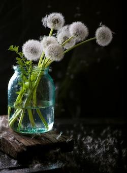 Un bouquet de pissenlits séchés dans un pot d'eau sur fond noir.