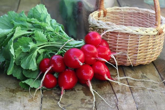 Bouquet de radis frais avec des sommets et des déchets sur une plate-forme en bois.