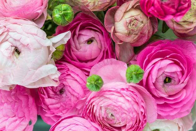 Bouquet de renoncules roses, fleurs renoncules
