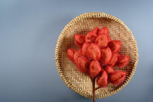 Bouquet de rocou au tamis de paille sur fond neutre.