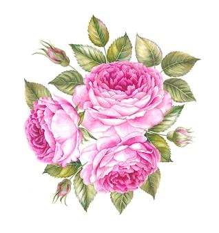 Bouquet de rose sur blanc.