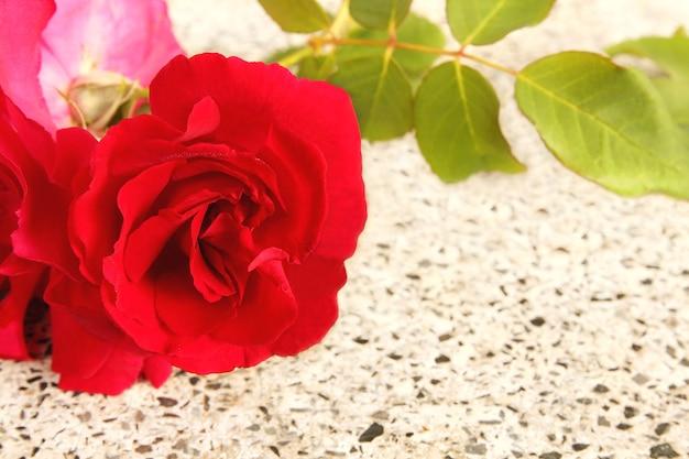 Bouquet rose rouge sur fond de marbre blanc avec espace de copie, concept de l'amour et de la saint-valentin.