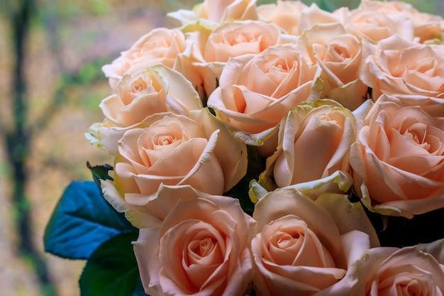 Bouquet de roses délicates. un fond de roses florales. belles fleurs. un cadeau pour les vacances. fleurs fraîches.