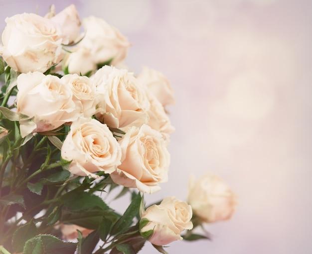 Bouquet de roses roses avec espace libre pour le texte