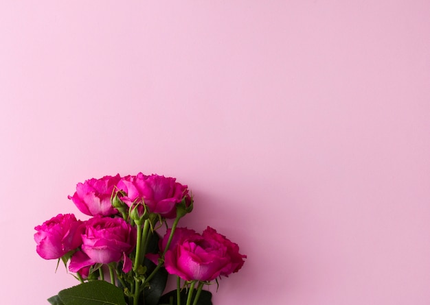 Bouquet de roses roses en rose avec espace de copie.