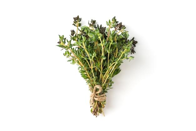Bouquet de thym isolé sur fond blanc
