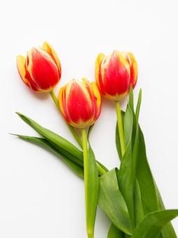 Bouquet de tilups rouges