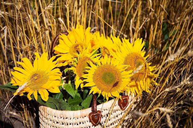 Un bouquet de tournesols se trouve dans un sac de paille sur un grand champ de blé.