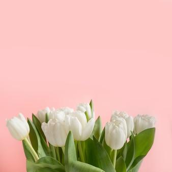 Bouquet de tulipe blanche sur rose. motif floral.