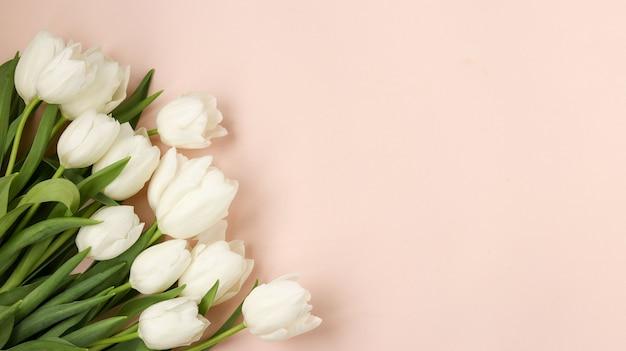 Bouquet de tulipes blanches printanières fraîches repose sur un pastel clair