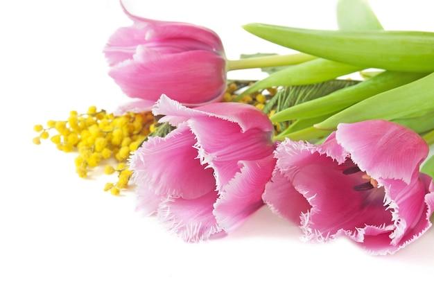 Bouquet de tulipes et fleurs de mimosa