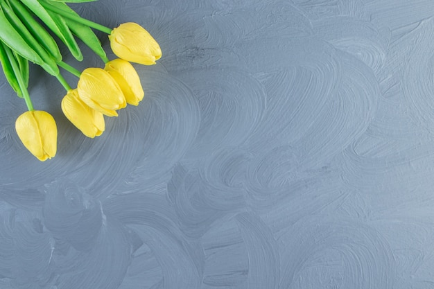 Bouquet de tulipes jaunes, sur fond blanc. photo de haute qualité