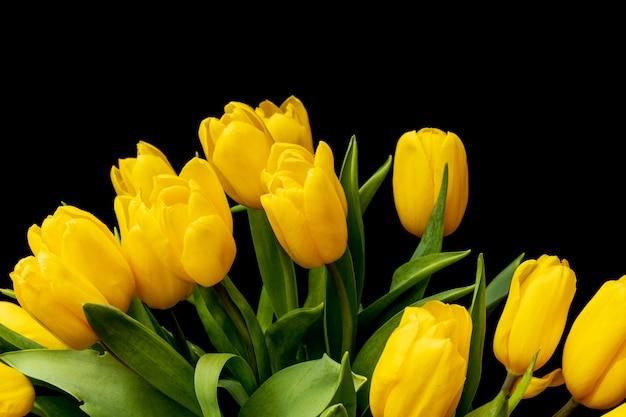 Bouquet de tulipes jaunes sur fond noir. fleurs festives. un cadeau de femme. beaux bourgeons. photo de haute qualité