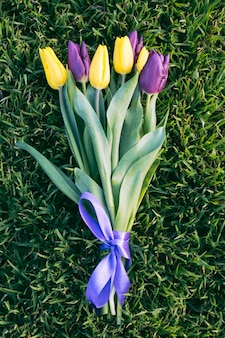 Bouquet de tulipes jaunes et violettes sur l'herbe verte closeup