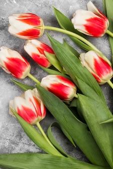 Bouquet de tulipes roses blanches sur fond gris. vue de dessus