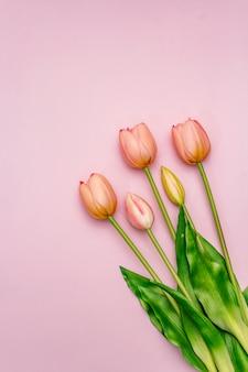 Bouquet de tulipes roses douces sur table rose
