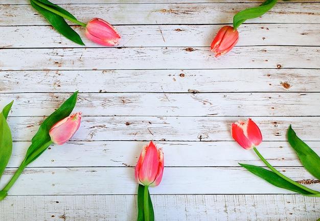 Bouquet de tulipes roses sur des planches de bois blanches