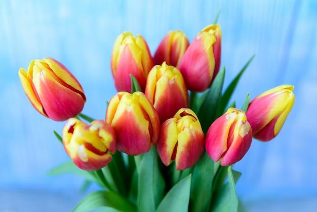 Bouquet de tulipes rouges et jaunes sur fond bleu.