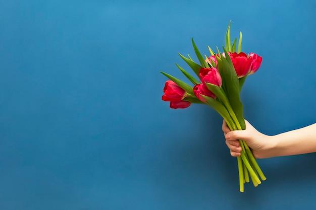 Bouquet De Tulipes Rouges à La Main Sur Fond Bleu. Photo Premium