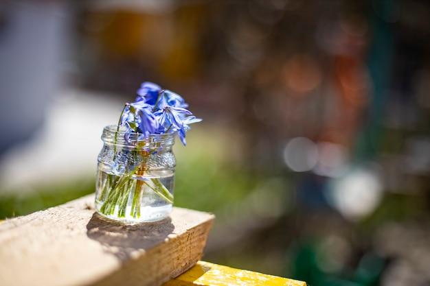 Bouquete de premières fleurs de printemps perce-neige bleus dans un bocal en verre au soleil. mise au point douce en gros plan, mise au point créative et flou