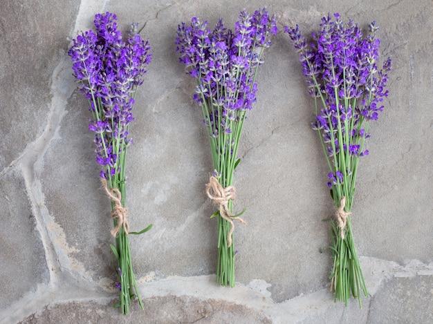 Bouquets de lavande sur fond de béton. plantes médicinales. aromathérapie. été