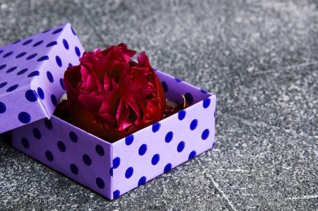 Bourgeon de pivoine dans une boîte violette sur fond gris