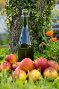 Bouteille de cidre de normandie avec des pommes dans l'herbe,