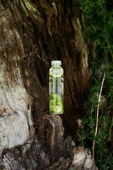 Une bouteille d'eau au citron et à la menthe se dresse sur un vieil arbre