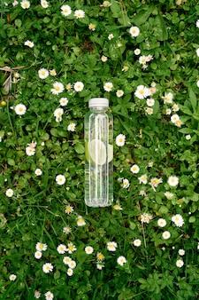 Une bouteille d'eau au citron se trouve sur l'herbe verte parmi les marguerites