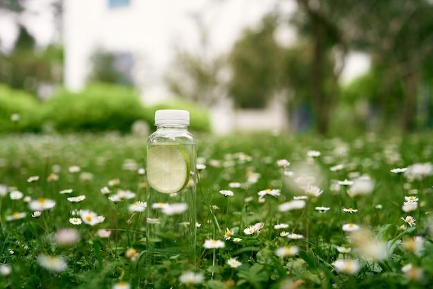 Une bouteille d'eau se dresse sur l'herbe verte parmi les marguerites