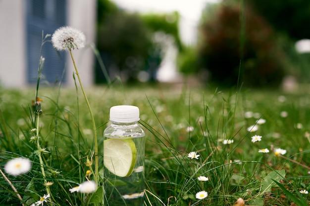 Une bouteille d'eau se dresse sur une pelouse verte parmi les marguerites et les pissenlits