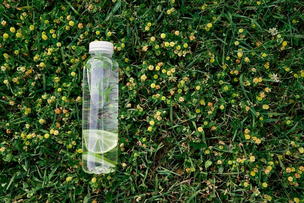 Une bouteille d'eau se trouve sur l'herbe verte parmi les fleurs sauvages