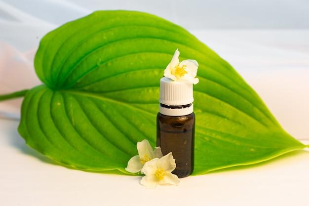 Bouteille d'huile essentielle cosmétique avec fleur de jasmin sur concept d'aromathérapie à grandes feuilles vertes