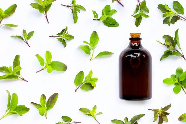 Bouteille d'huile essentielle avec des feuilles de basilic sacré sur fond blanc. vue de dessus