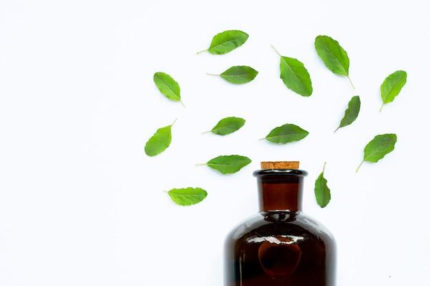 Bouteille d'huile essentielle avec des feuilles de basilic sacré