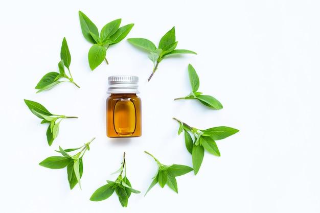Bouteille d'huile essentielle avec des feuilles de basilic sucré