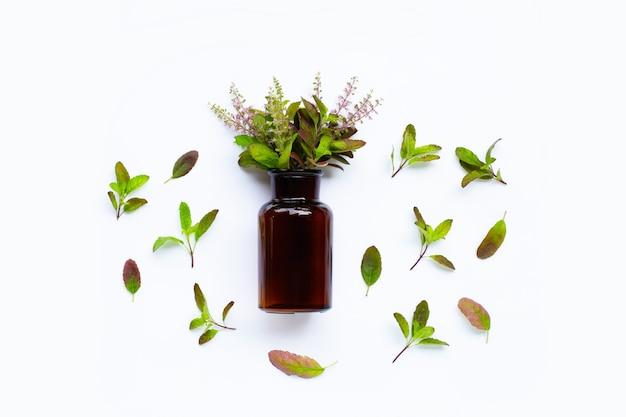 Bouteille d'huile essentielle avec des feuilles et des fleurs de basilic sacré frais
