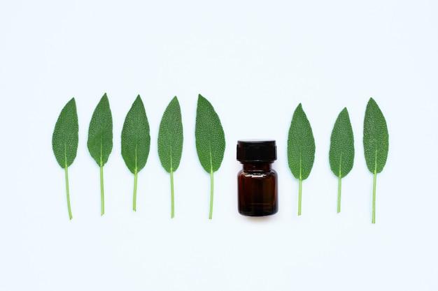 Bouteille d'huile essentielle avec des feuilles de sauge sur fond blanc.